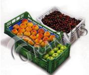 Ящики для плодово-ягодной продукции (черешни,  вишни,  клубники)