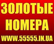 Золотые номера МТС,  Киевстар,  Лайф,  Билайн,  Красивые номера,  Низкие цены