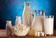 Действующий молокозавод