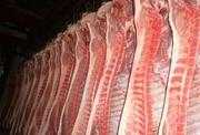 Свинина и говядина оптом в тушах,  полутушах. Охлажденная и мороженная.