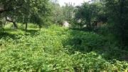 Продам дом с участком в селе Лука-Мелешковская
