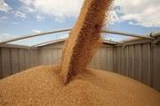 Перевозка зерна автотранспортом по Украине